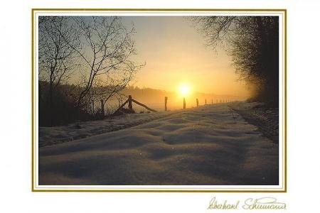 Sonnenaufgang am winterlichen Waldrand