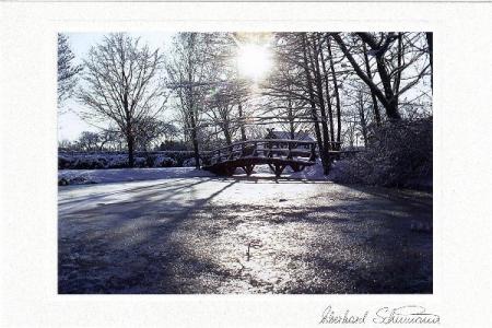 Winterteich mit Brücke im Gegenlicht