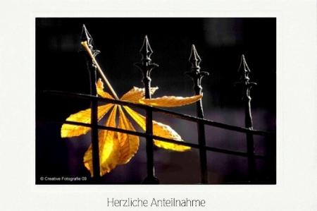 Herbstliches Kastanienblatt im Zaun